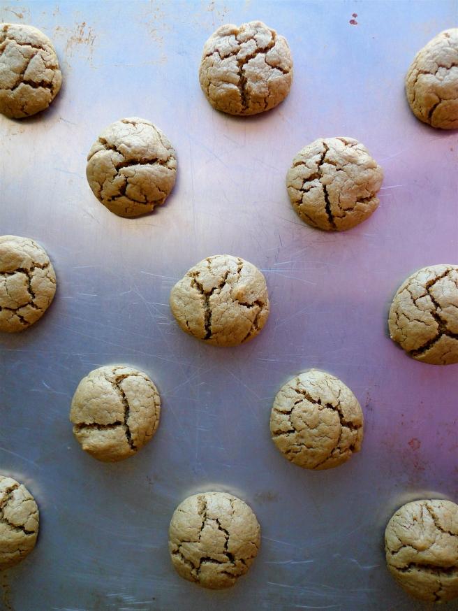 Maple-Sunbutter Cookies {gluten-free,vegan}
